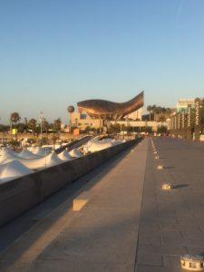 elsemarielehman - barcelona - morgenløb